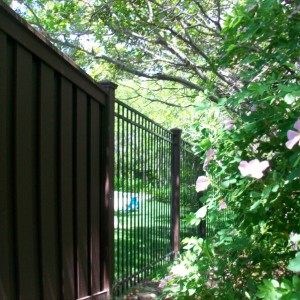 Trex Seclusions Composite Privacy Fencing Ornamental Iron Fencing