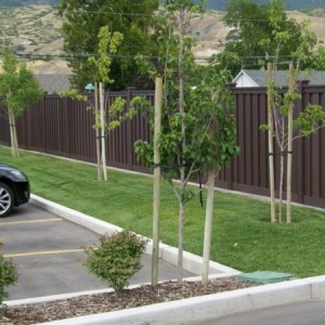 Trex Seclusions Privacy Fence Woodland Brown